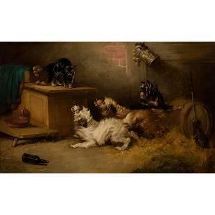 George Armfield - Antagonizing the Barn Cat