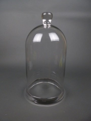 Antique glass display dome