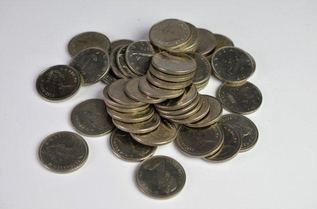 45 CANADIAN DOLLAR COINS