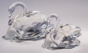 Swarovski Crystal Swans Duo