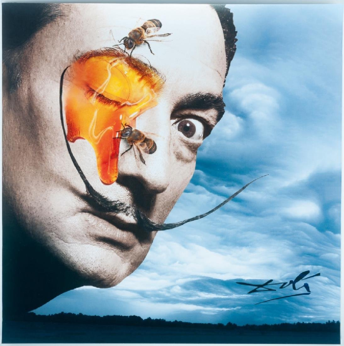 Tan Tolga Demirci Photo Collage, Salvador Dali