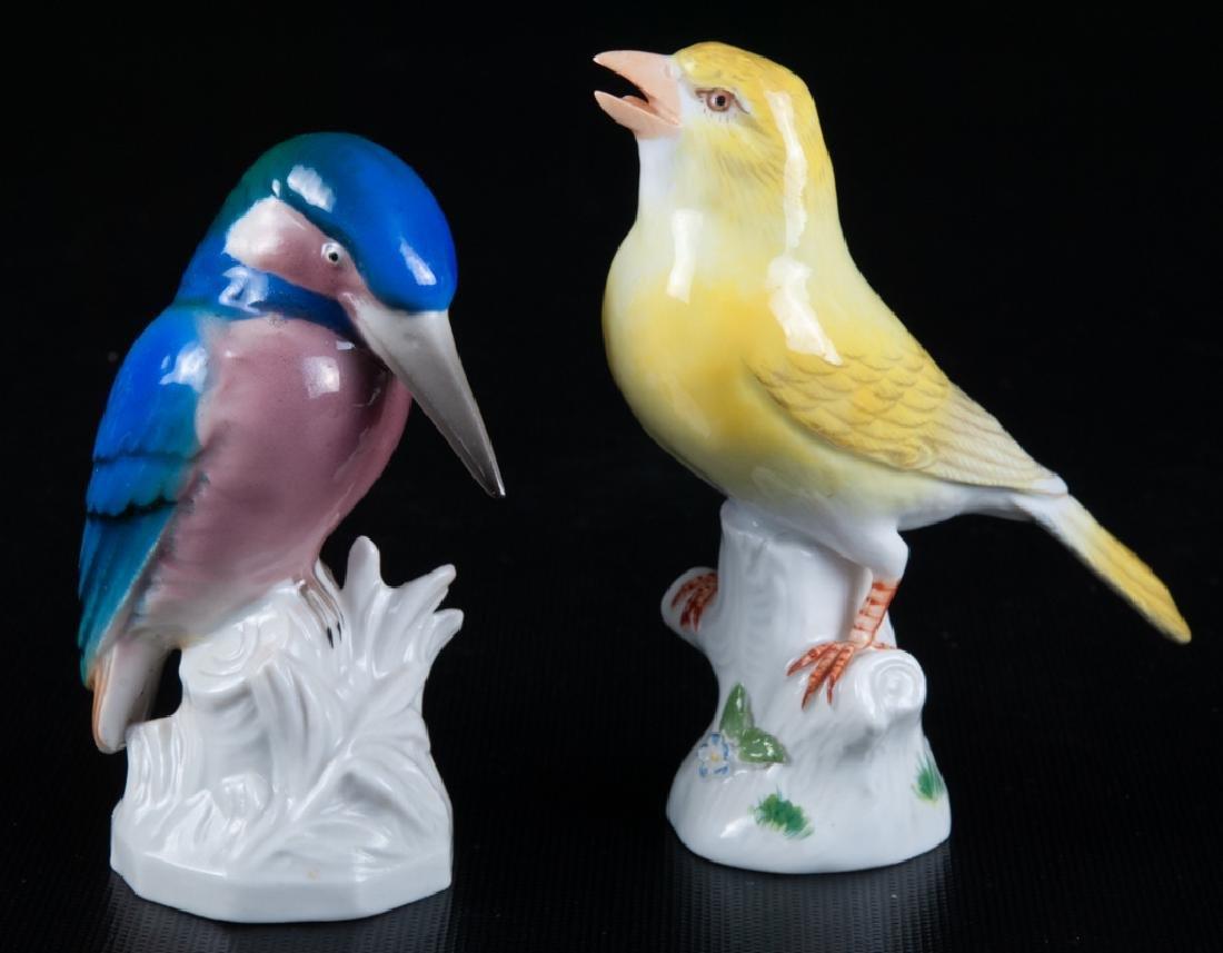 Meissen & Unterweissbach Porcelain Birds Pair