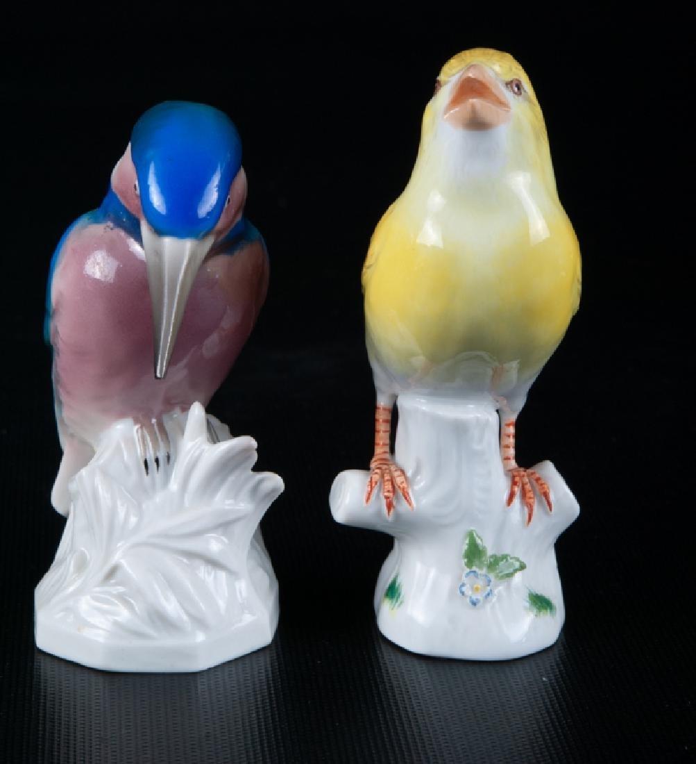 Meissen & Unterweissbach Porcelain Birds Pair - 2