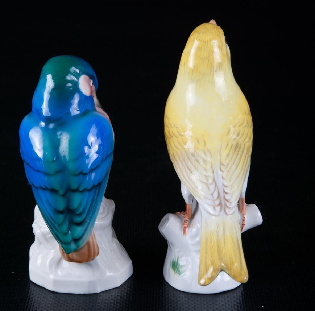 Meissen & Unterweissbach Porcelain Birds Pair - 4