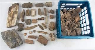 Geological Specimens