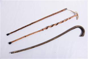 Cane and Walking Stick Group 3 Pieces