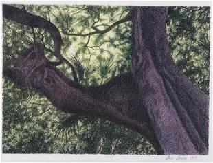 Dave Bruner Print