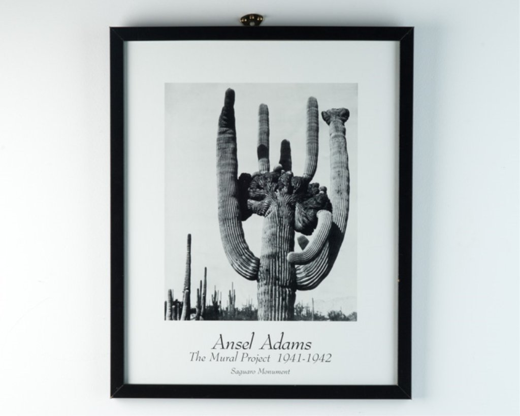 "An Ansel Adams Poster ""The Mural Project"""