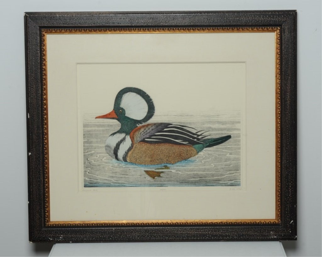 """Merganser Duck"" Hand Colored Etching by Dan Mitra"