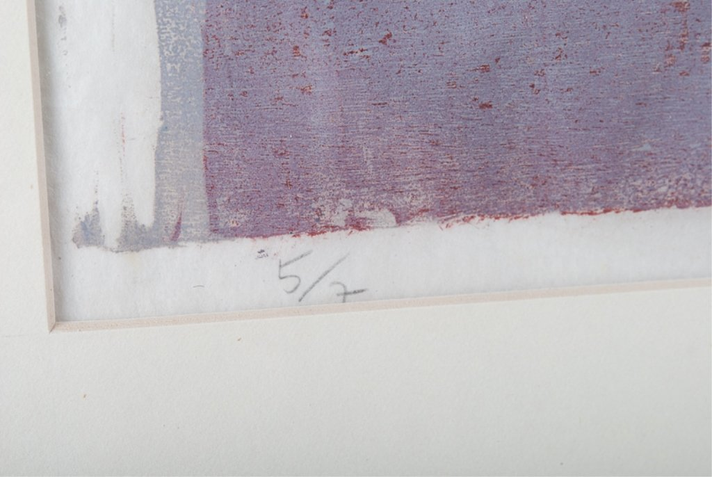Vera Chaves Barcellos Abstract Litho - 4