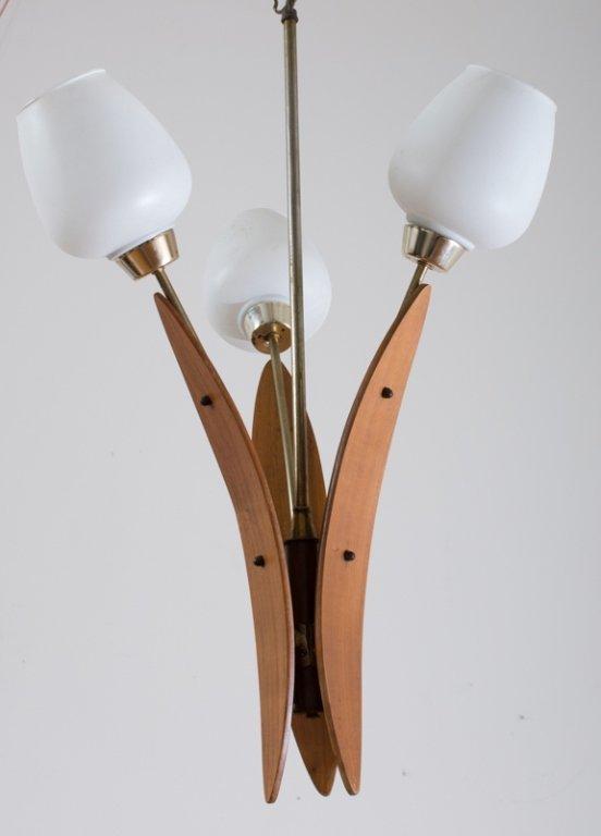 Danish Teak Light Fixture - 3