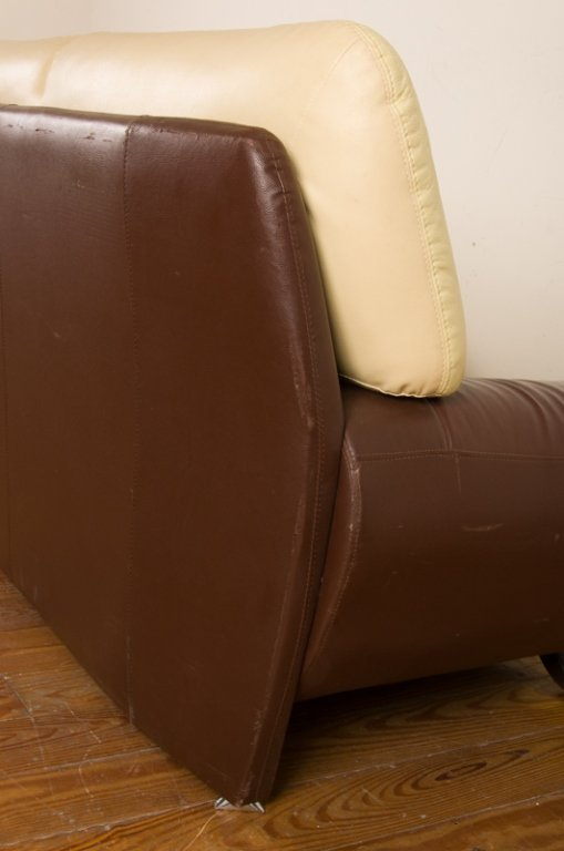 Leather Two-Toned Contemporary Loveseat - 5