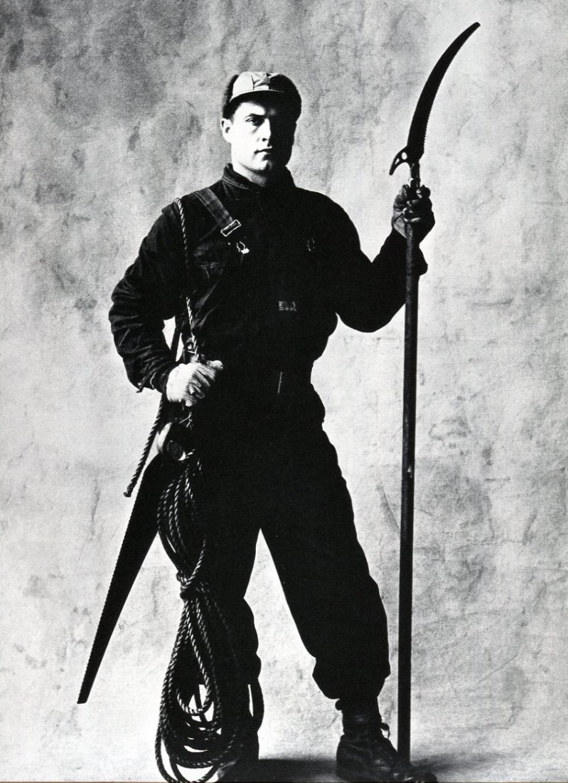 Irving Penn - Tree Pruner, NY - PhotoGravure