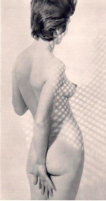Bevilacqua, Carlo - Nude grillage