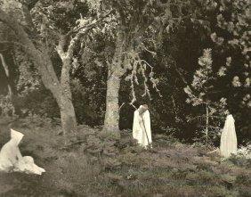 Bullock, Wynn - In The Forest