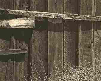 Adams. Ansel - Old Fence