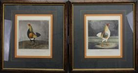 (2) Framed Hand Colored Engravings of Chickens