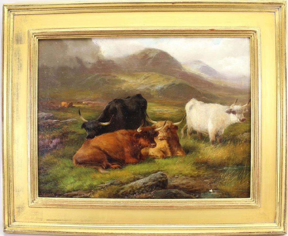 "John Morris, ""Highland Cattle"""