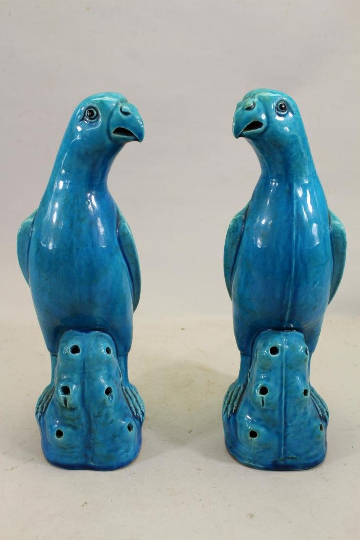 Pair of Important Chinese Export Turquoise Parrots