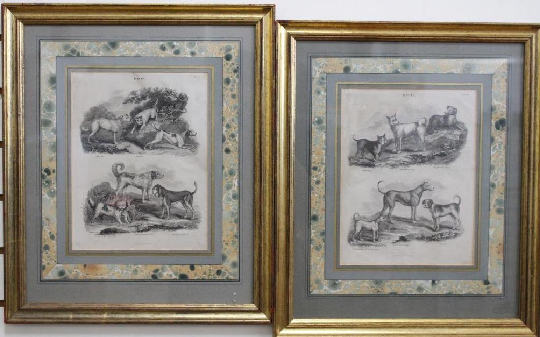 (2) Framed Antique Dog Engravings