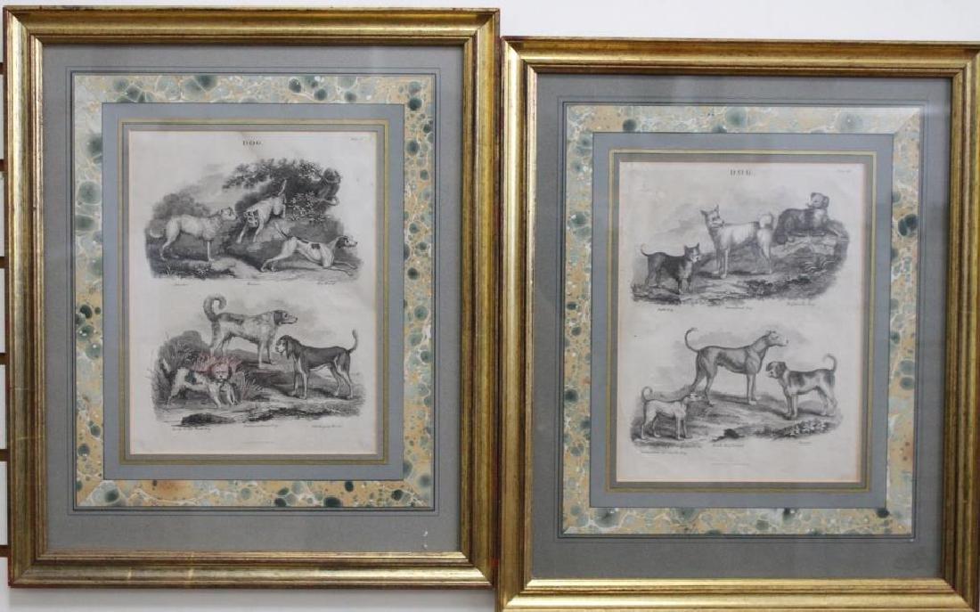 (2) Framed Antique Dog Engravings
