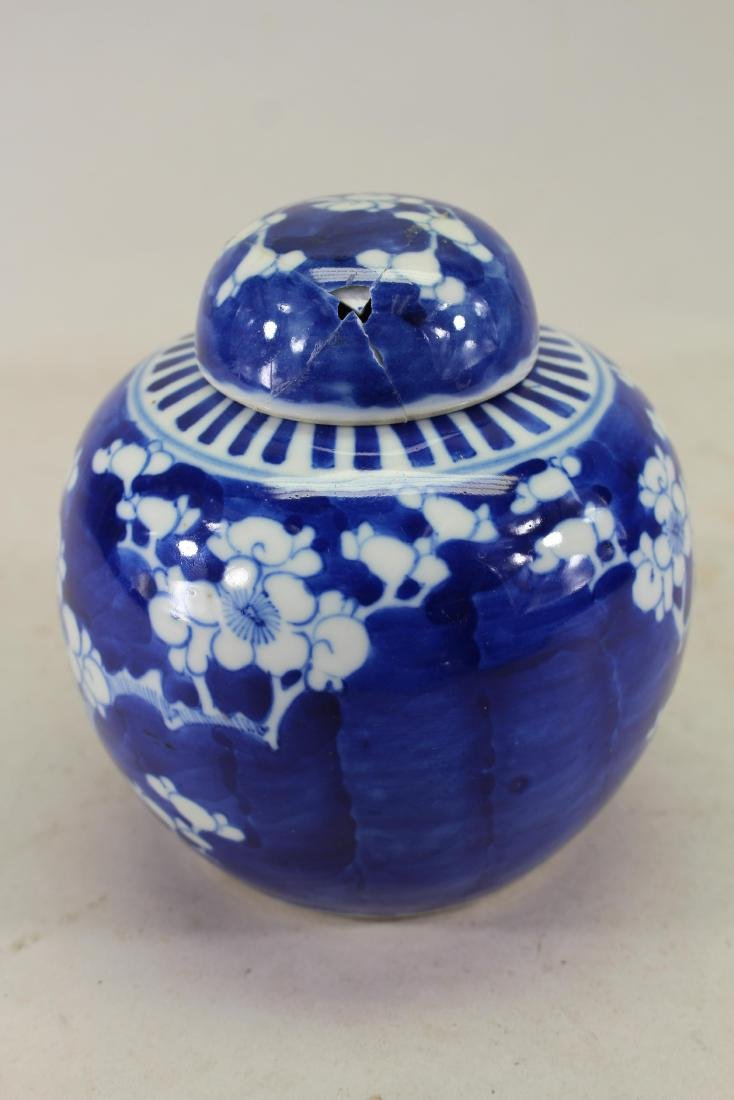 Antique Chinese Blue/White Hawthorne Pattern Jar