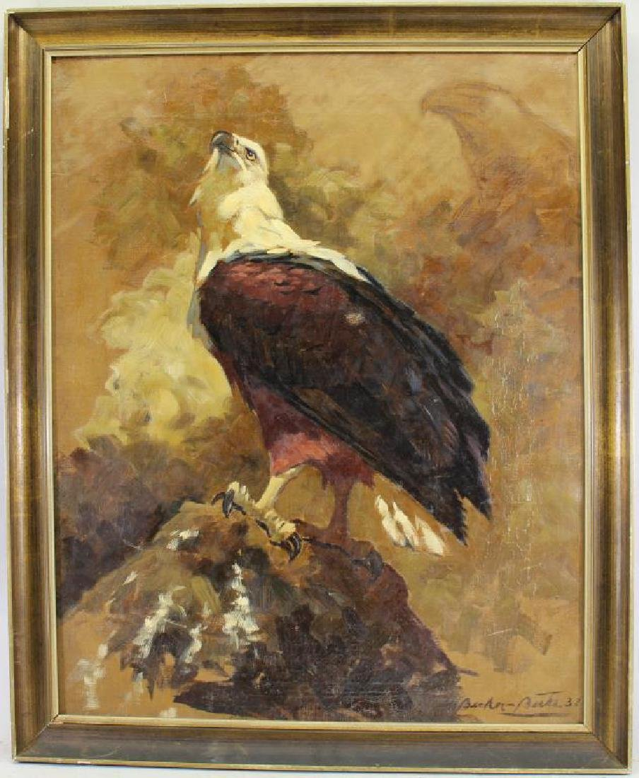 Continental School, Portrait of a Bald Eagle