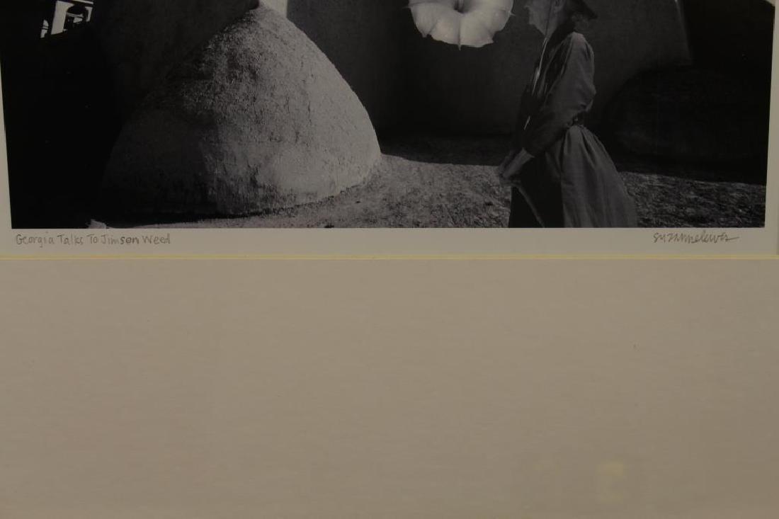 """Georgia (O'Keeffe) Talks to Jimson Weed"" Image - 2"