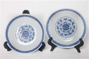 Pair 1907 Qing Dynasty Blue and White dishes