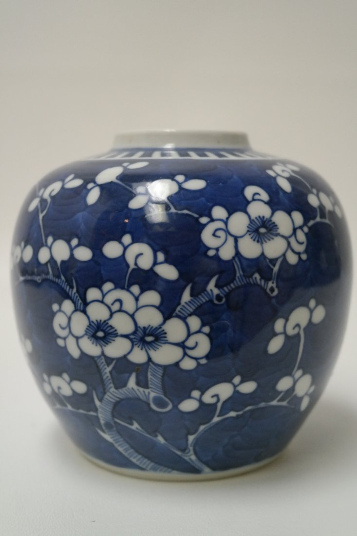 19th Century Chinese Blue/White Floral Jar