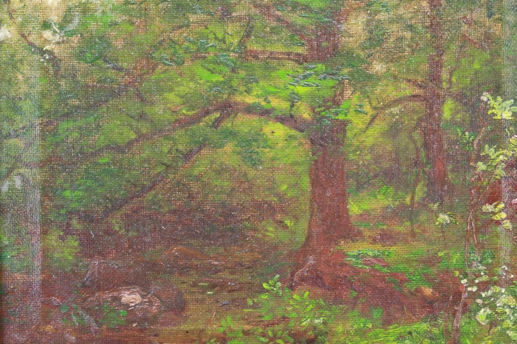 20th C. Oil/Board of a Wooded Landscape - 2