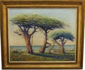 William Adam (1846 - 1931) Monterey Cypress