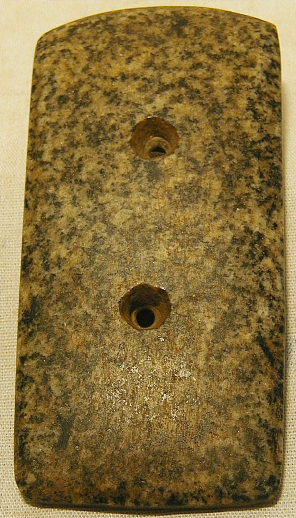 1007: 4 x 2 Speckled Gorget, Ex-Spearr Collection