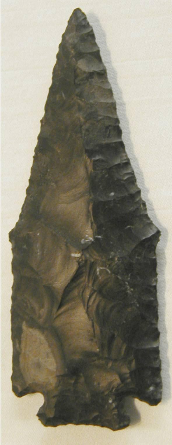 "4016: Pentagonal 3 3/4"". Ross County, Ohio, Black Cosho"
