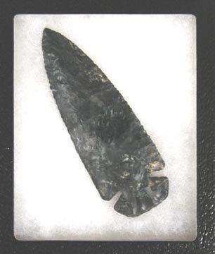 2022: Indian Dovetail Coshocton Flint