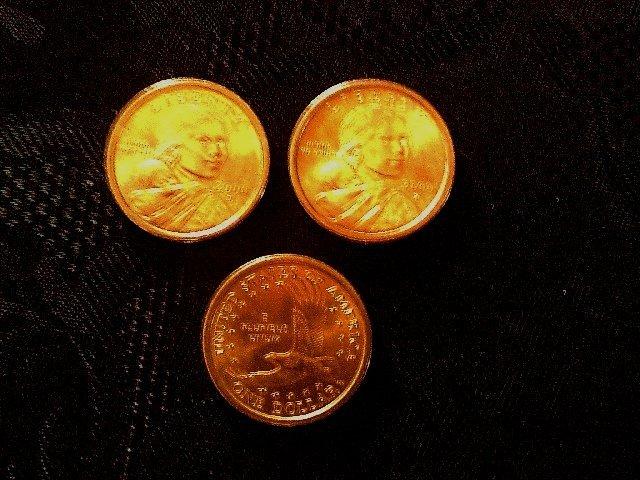Sacagawea Coins