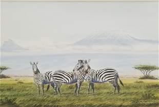 Ng Ang Nganga Ndeveni Zebra Kenya