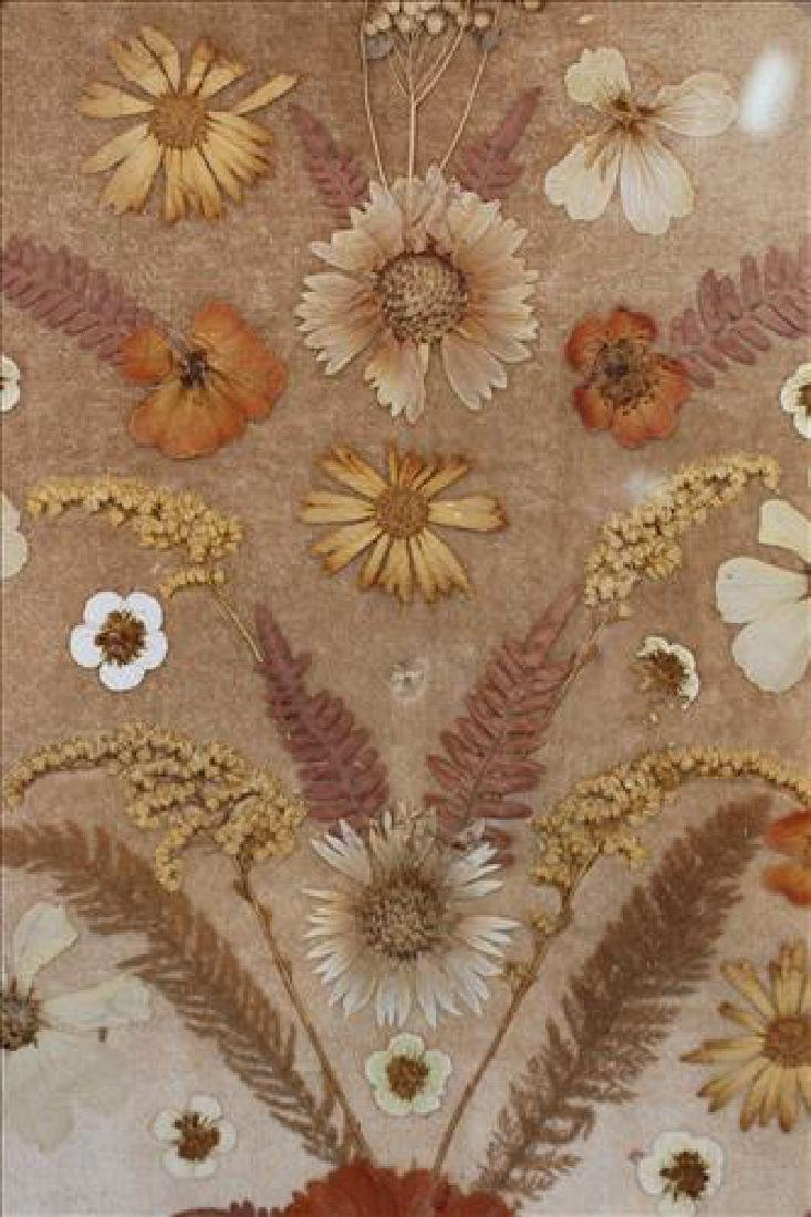 Oval Victorian walnut frame w pressed dried flowers - 2