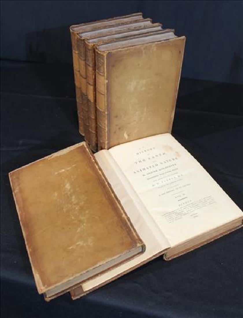 Very rare 6 volume set of Goldsmith's Nature books