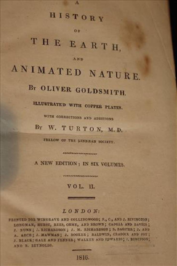 Very rare 6 volume set of Goldsmith's Nature books - 2