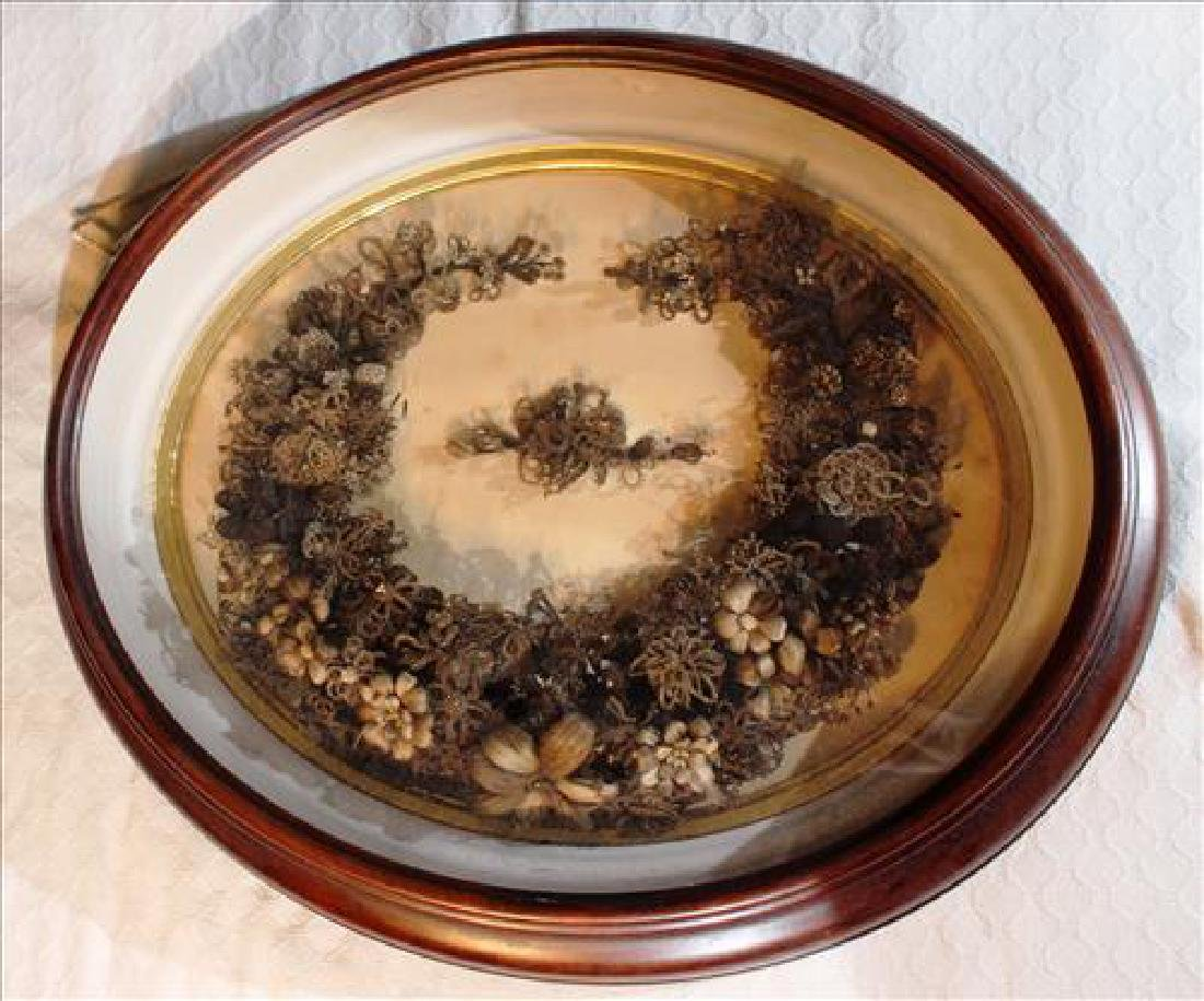 Oval Victorian walnut shadowbox containing a hair