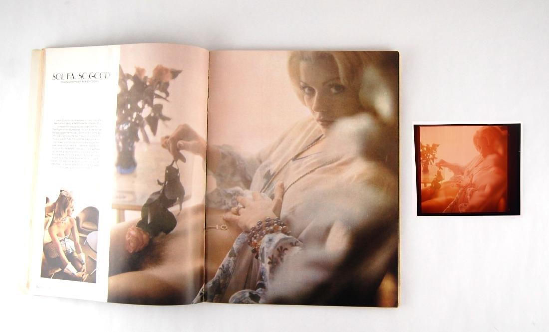 Nude Penthouse 1972 Janet Dunphy Chrome Negative - 2