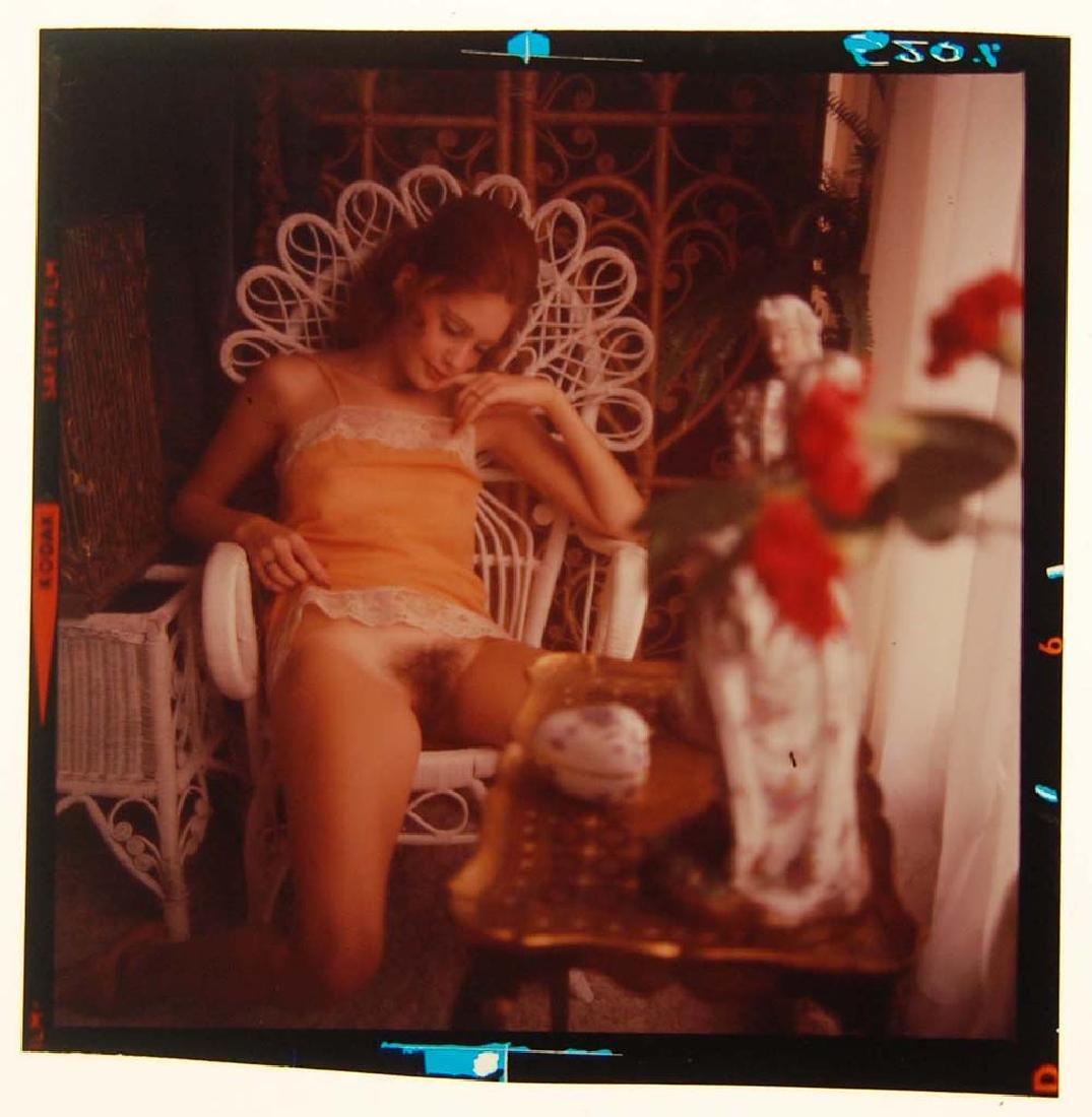 Nude 120mm Transparency Karen Sather & Penthouse - 3