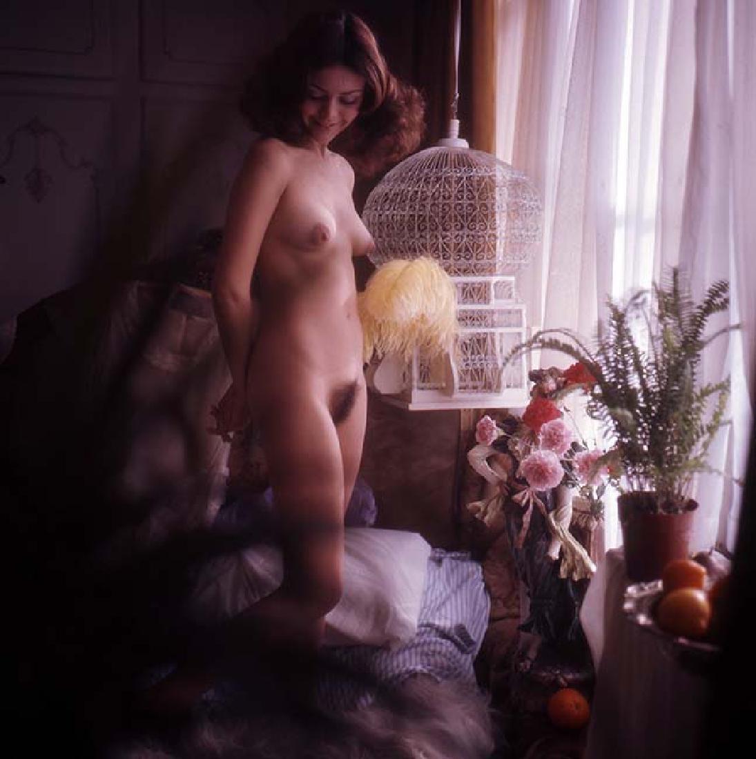 Orig Nude 120mm Transparency Sandi Greco by Guccione #7