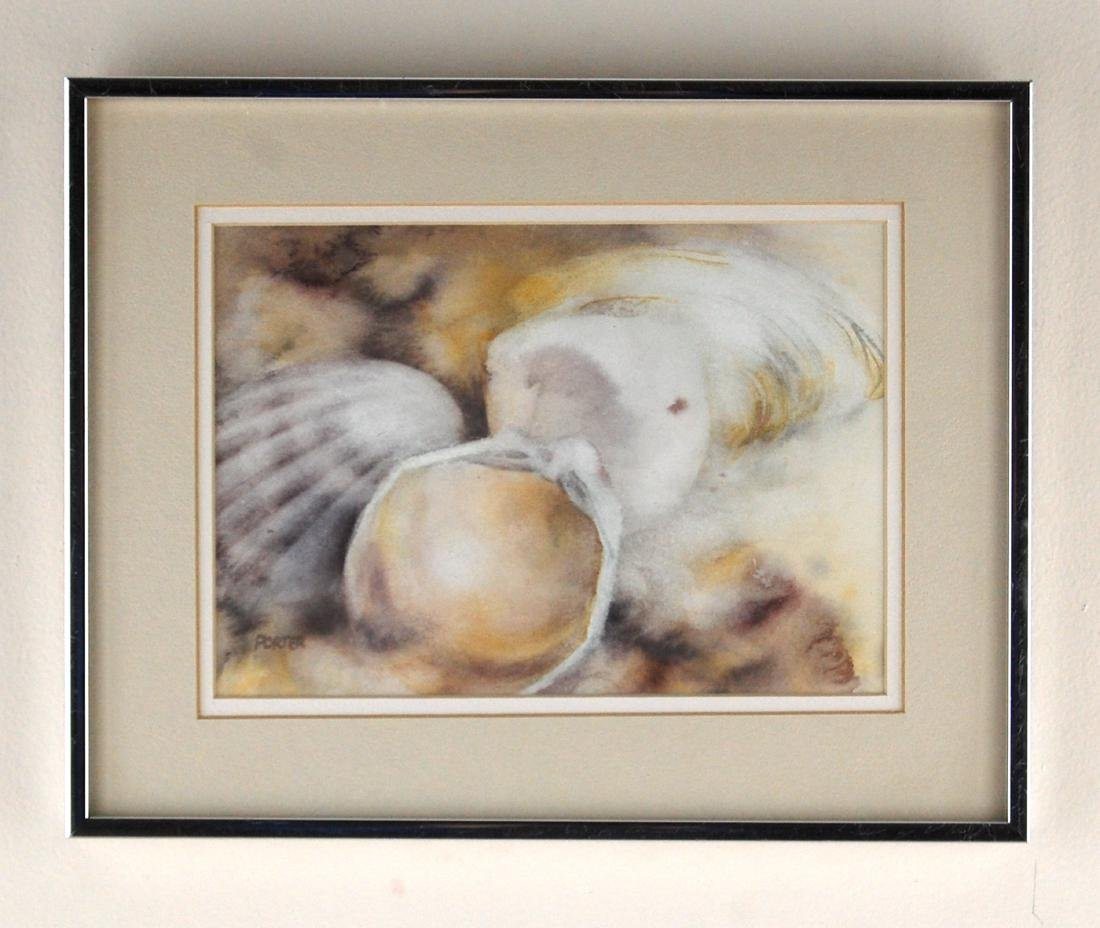 Porter Seashells At The Beach Contemporary Watercolor - 2