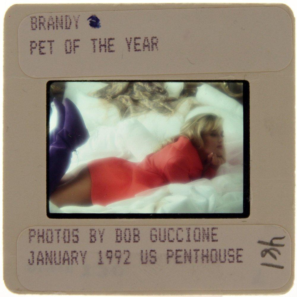 Original 35mm Baywatch Star Brandy Ledford 1991(Ex)