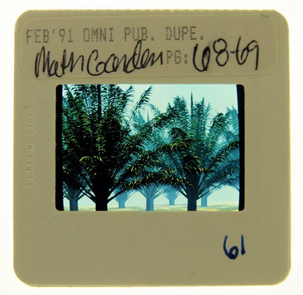 Orig OMNI 35mm Slide Pub Feb '91, Pg 68-69(Excellent)