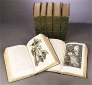 0733: After John James Audubon (American, 17