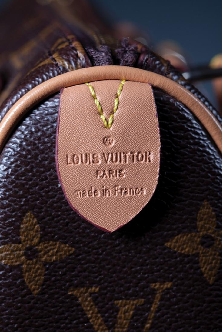 Louis Vuitton Mini Speedy Handbag - 2