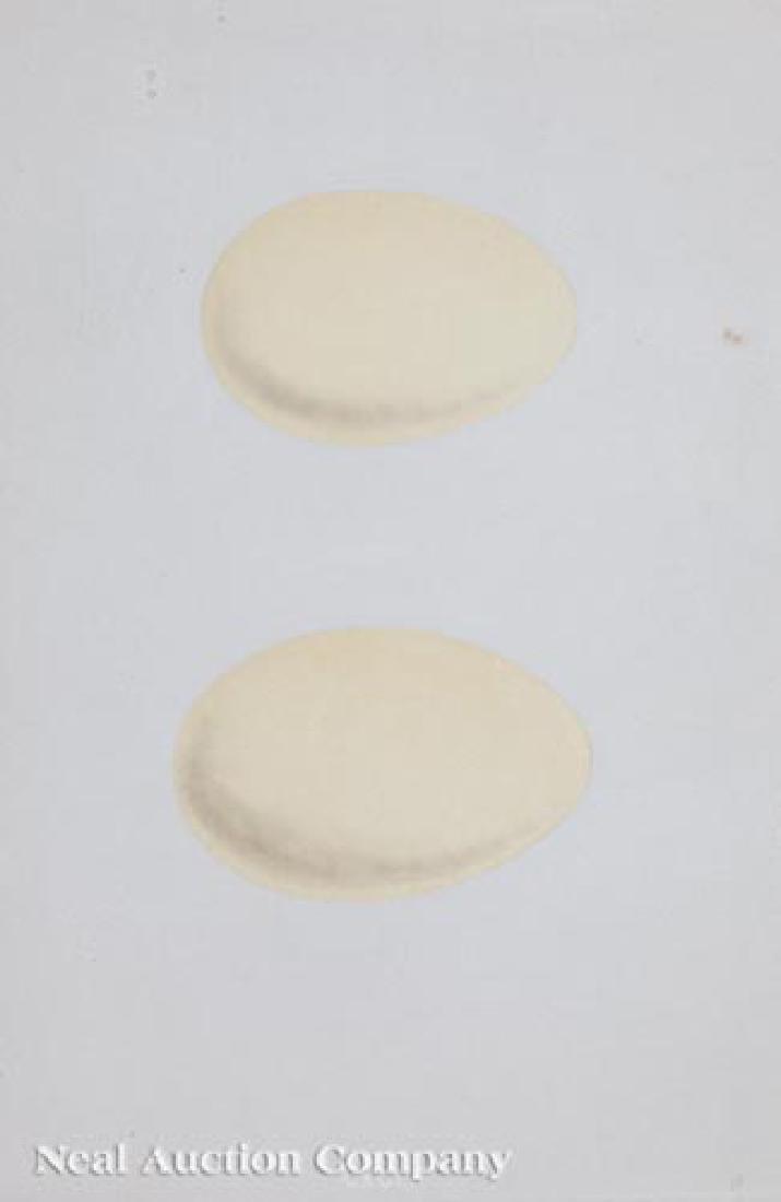 Four Antique Egg Prints - 3